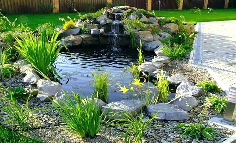 using rainwater for fish pond preppingplanet.com